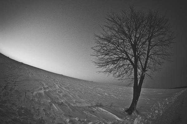 Fotografia - ZIMA