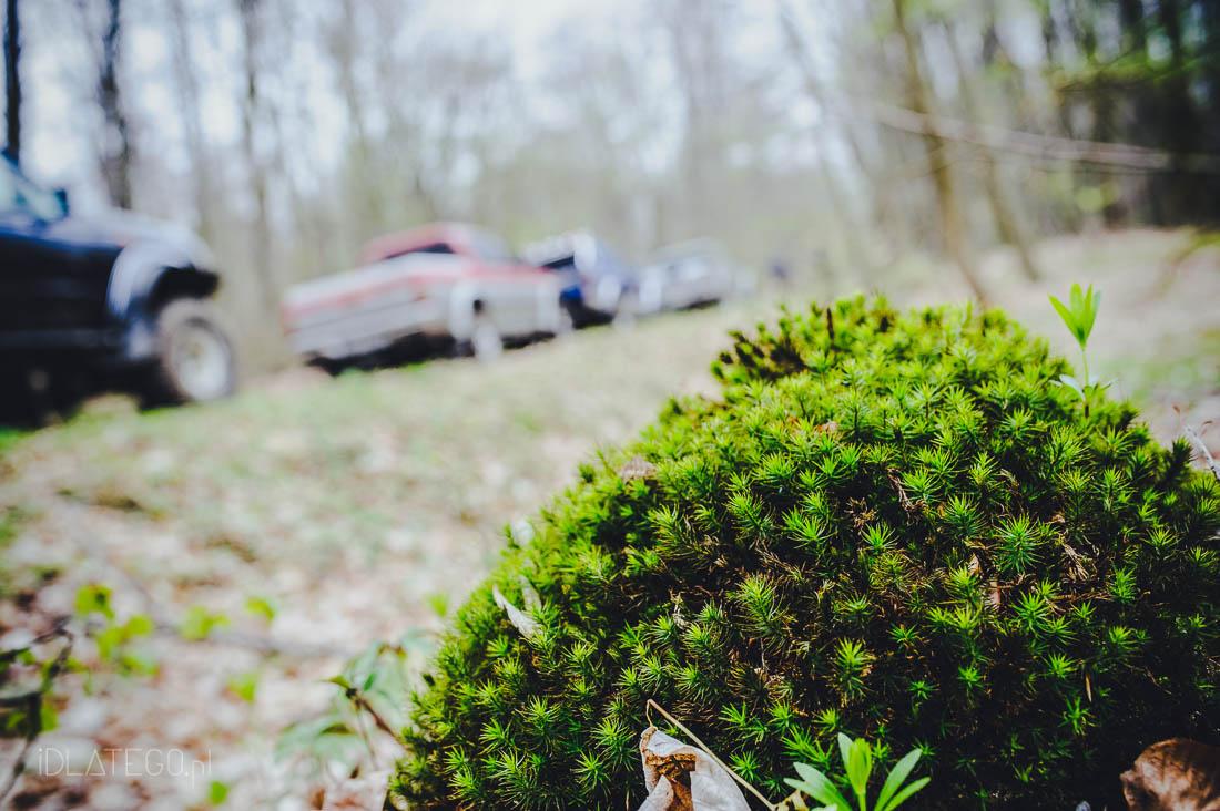 fotografia: Urodziny Drzewiastego 2014 (029)