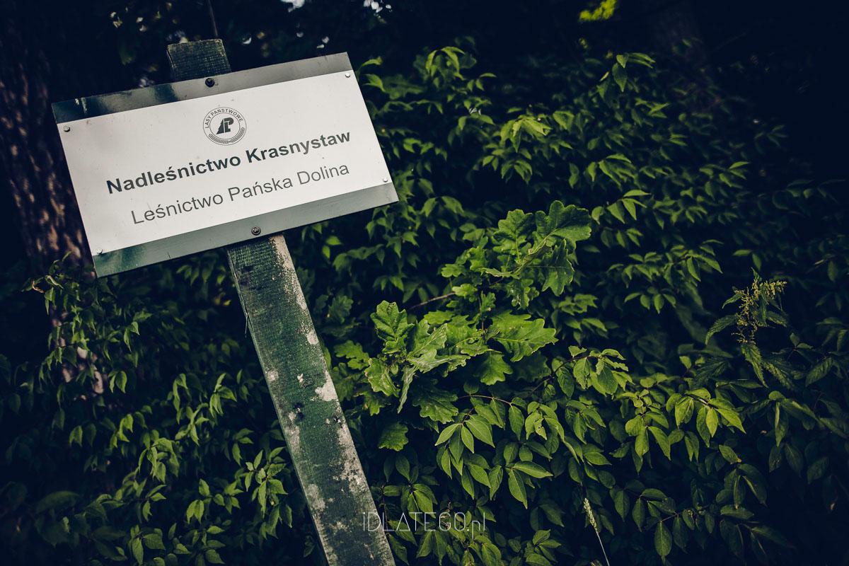 fotografia: Sesja narzeczeńska - Patrycja i Kamil (023)