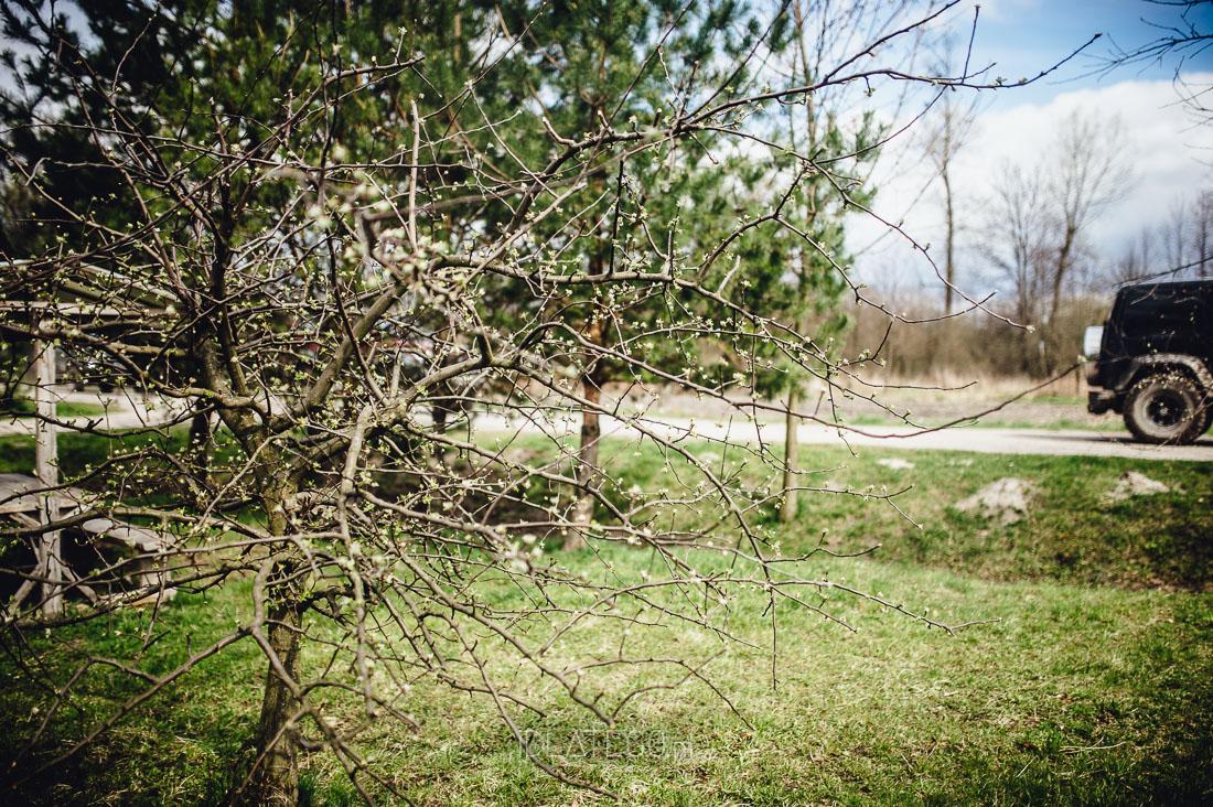 fotografia: Fotoreportaż: Roztoczański szlak bunkrów i cerkwi (151)