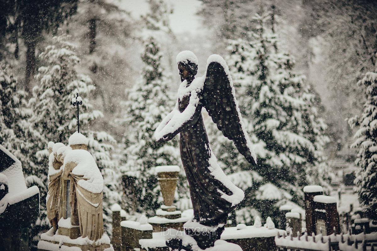 fotografia: Zimowy Lwów. (013)