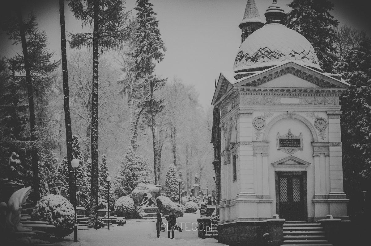 fotografia: Zimowy Lwów. (028)