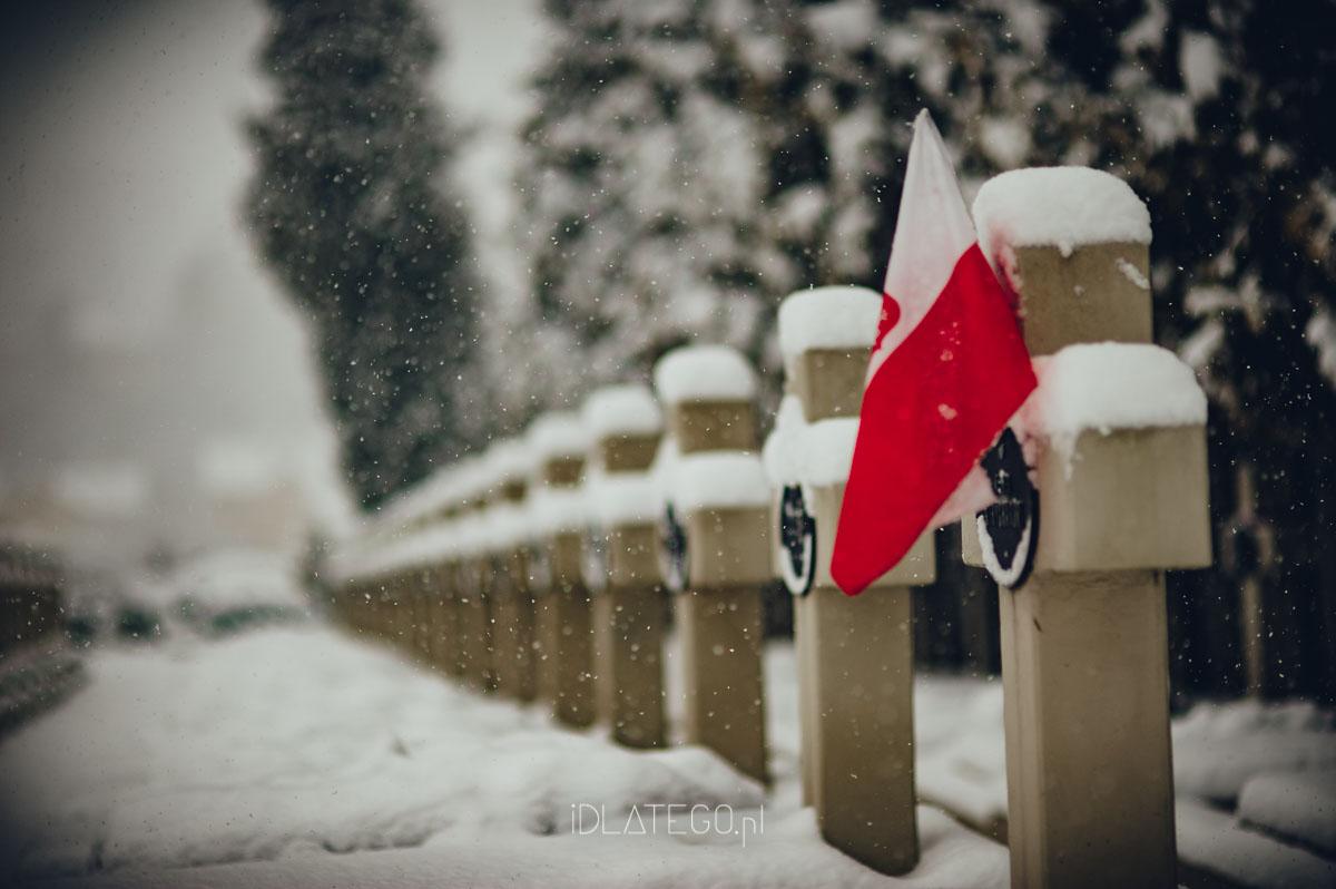 fotografia: Zimowy Lwów. (041)