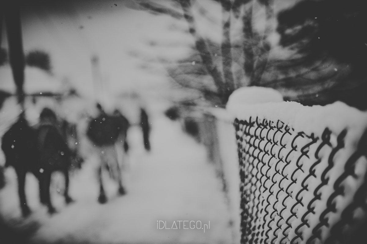 fotografia: Zimowy Lwów. (042)